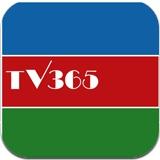 电视365