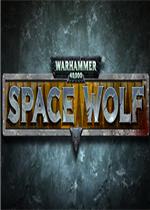 战锤40k:太空野狼