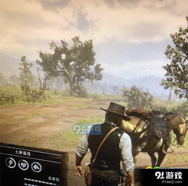荒野大镖客2金色马匹在哪里 荒野大镖客2金色马匹地图位置一览