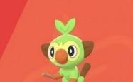 宝可梦剑盾敲音猴怎么抓 宝可梦剑盾敲音猴捕捉玩法全攻略
